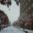 冬のツルツル路面対策