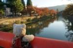 京都紅葉情報。東山、南禅寺、永観堂など。今年の紅葉は早め。ミモロの紅葉狩りアドバイスも