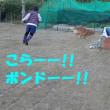紅葉真っ盛り♪♪ in 奈良