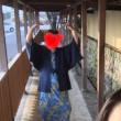 別府再発見の旅 パート②  ちょっとだけてくてく〜〜