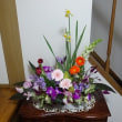 今年2ケ目の花