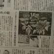 今朝の毎日新聞に 温かい「かっちゃんのゆめ」の絵というタイトルで紹介されました
