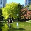 「紅葉/日比谷公園」