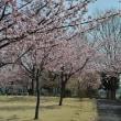 道の駅 妻沼 2018春