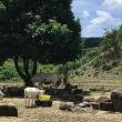 のんびり草刈りと循環農法のすばらしさ・・・