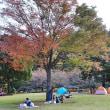 原チャリミニツアー  宮ヶ瀬湖畔の紅葉見物