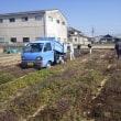 サツマイモ圃場への堆肥まき