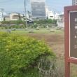 小田原城平成三十年