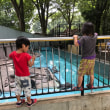 久しぶりの動物公園でペンギンに癒される
