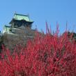 天下の名城、大阪城は落ちず