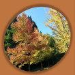 秋色、秋分の日