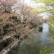 滋賀県の日牟禮八幡宮、4月5日に行きました。NO.8
