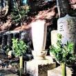 天野氏墓所の無常