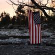 米加州の山火事、31人死亡・数百人が行方不明