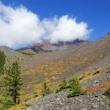 富士山  懐中処の秋彩追い... 2100m地点から仰ぎ見る