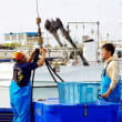 都屋漁港で!
