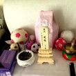 今日 筑紫の犬眠社で火葬してきました