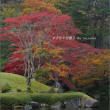 古峯(こほう)園の秋ふたたび・3 ~滝と紅葉