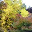 書写山圓教寺に行って来ました