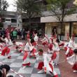 横浜良いよさこい祭り~良い世さ来い 2018  から