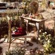 日比谷公園ガーデンショー