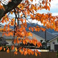 大阪万博と京都