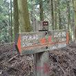 まち歩き左0775 京都一周トレイル 北山東部コース 19  分かれ道