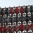 浅草   三社祭