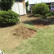 芝の張替え。