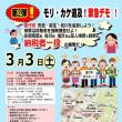 3.3もり・カケ追及緊急デモ・納税者一揆(第二弾)