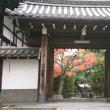 東福寺☆晩秋の旅2018