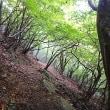 英彦山の紅葉の兆しは?