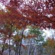 10/16 小川山