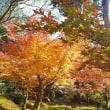 「東福寺」の紅葉