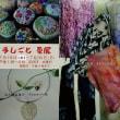 手しごと 夏展2018(つくば市・ギャラリー彩花)のご案内