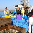 12月号の表紙は「天蓋施設完成の森漁協 秋サケ6期ぶりに1億円超え」(森港)でした。