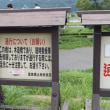 藤枝と島田