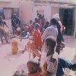 ナイジェリアでラッサ熱が激増したのは温暖化でネズミ大繁殖のせい?