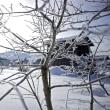 マイナス12℃の寒い朝