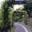 町の顔・・うつぼ公園