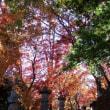 永源寺燈篭と紅葉