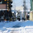 大雪の翌日は、雪かきして、雪の残る路地をのぞき歩きました…