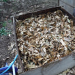 落ち葉堆肥作り開始。