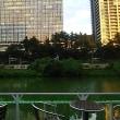 ブログ170912 飯田橋カナルカフェ デッキサイド