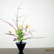 ツルウメモドキの曲線とモンステラの面・・自由花