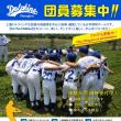 <<2017年度新メンバー大募集!!!上海ドルフィンズで一緒に野球をやろう>>