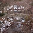 2018年1月香雪園のお散歩日記&更新情報