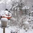 エストレリータ 積雪20センチ~今年最後の雪になるといいなあ~