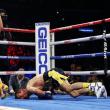 ロマチェンコ、挑戦者を一蹴(WBA/WBOライト級)