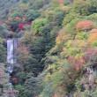 秋の気まま旅 43日目(日光の紅葉・帰宅)